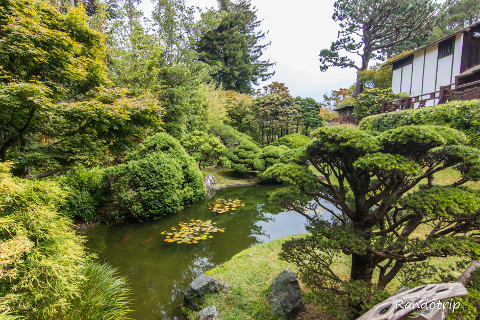 Japanese Tea Garden à San Francisco