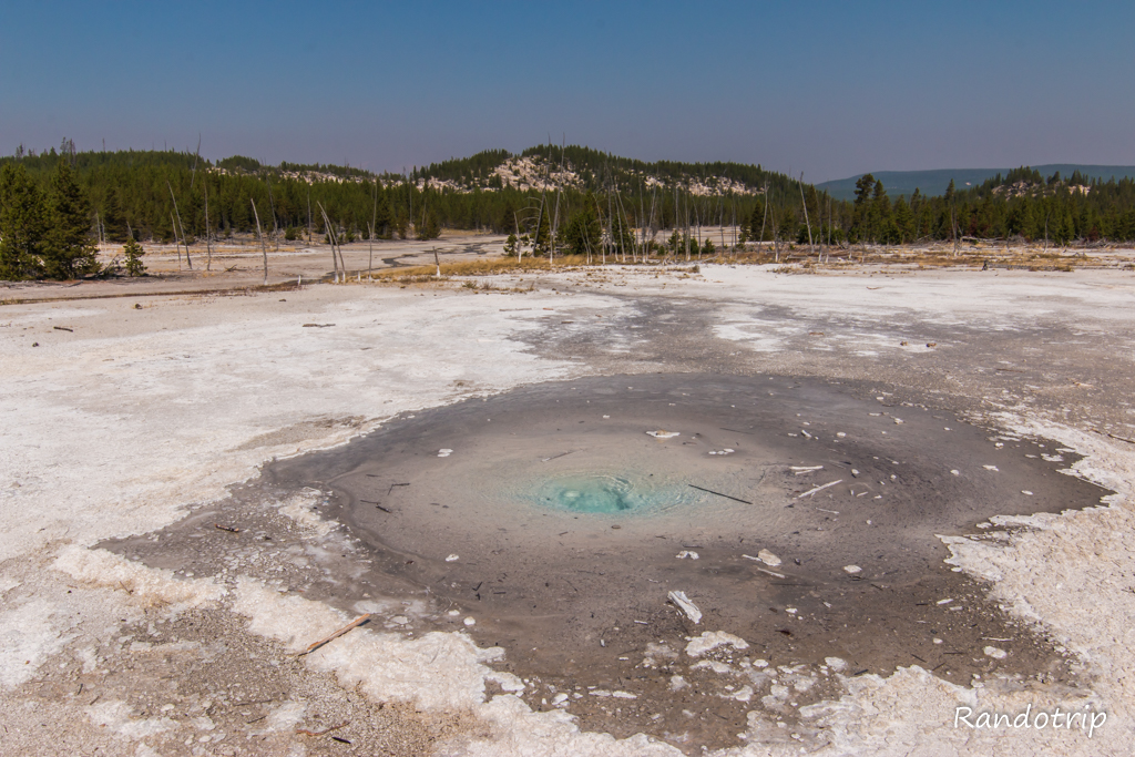 Secteur Back Basin (Norris Geyser Basin) à Yellowstone dans le Wyoming