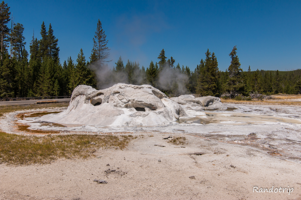 Grotto Geyser à Yellowstone dans le Wyoming