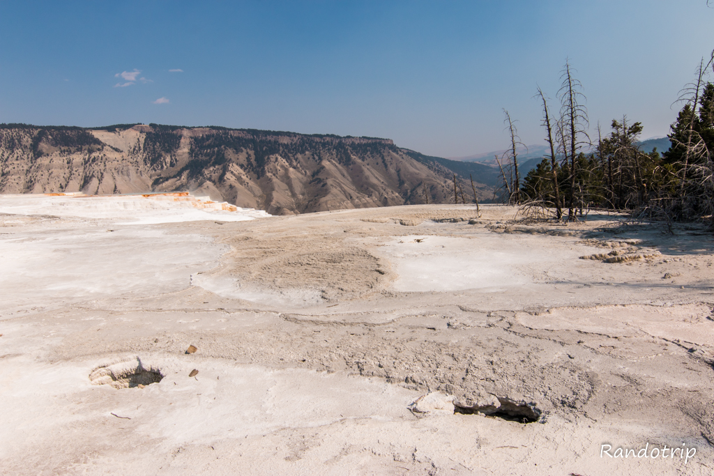 Secteur de Mammoth Hot Springs à Yellowstone