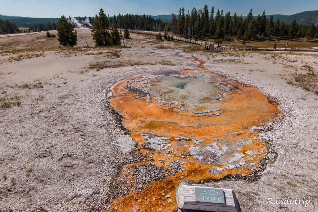 Tardy Geyser à Yellowstone dans le Wyoming
