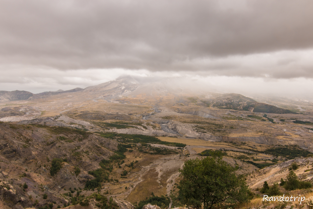 Sur le Harry's Ridge Trail au Mount Saint Helens dans l'état de Washington