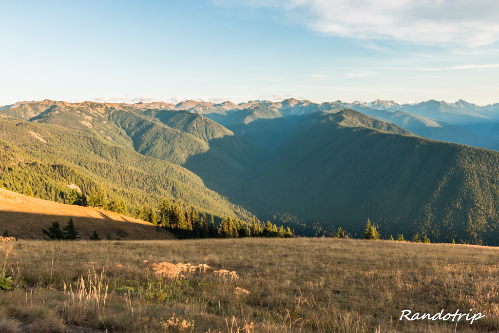 Point de vue sur les montagnes d'Olympic à Hurricane Ridge (Olympic National Park) dans l'Etat de Washington