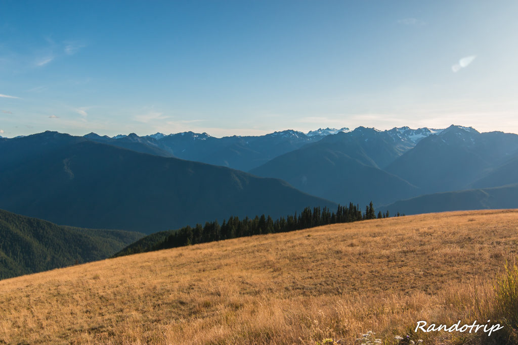 Point de vue depuis le Visitor Center d'Hurricane Ridge à Olympic National Park dans l'Etat de Washington
