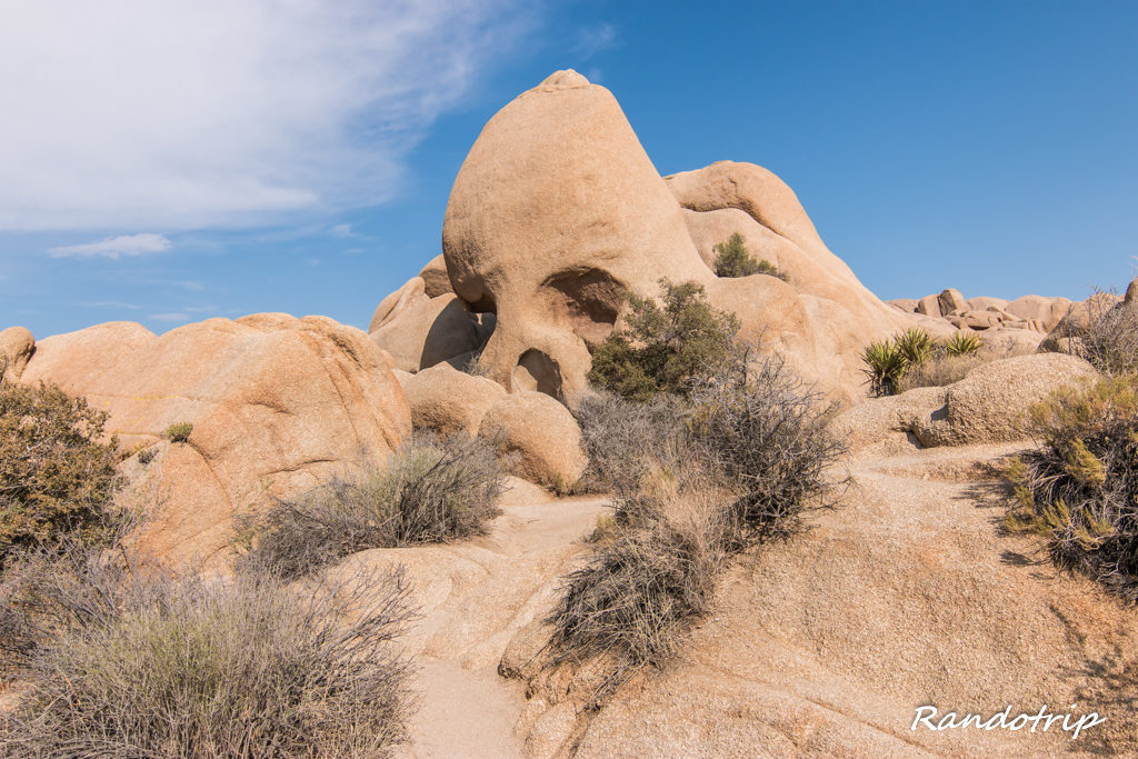 Skull Rock à Joshua Tree en Californie