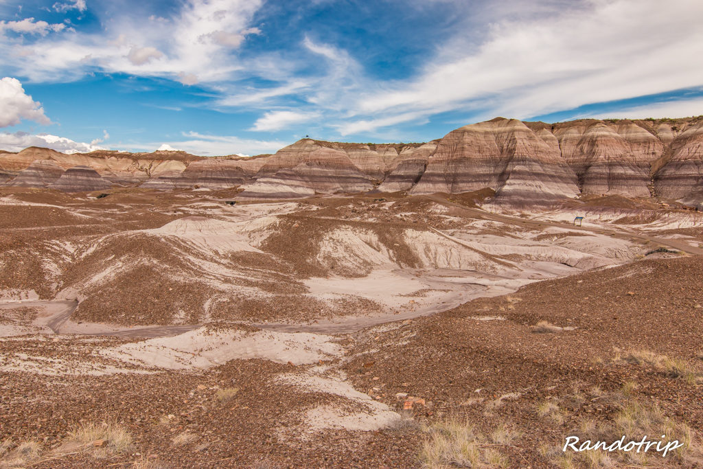 Le Blue Mesa Trail à Petrified Forest National Park dans l'Arizona
