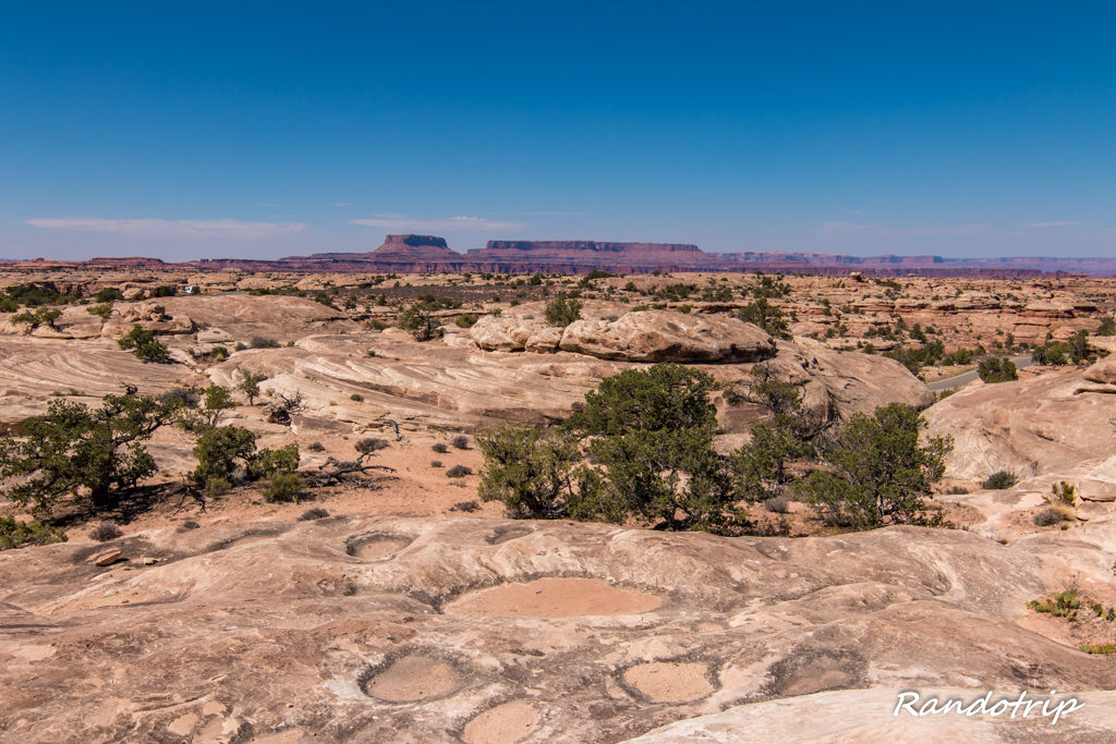 Pothole Point dans Canyonlands-The Needles en Utah