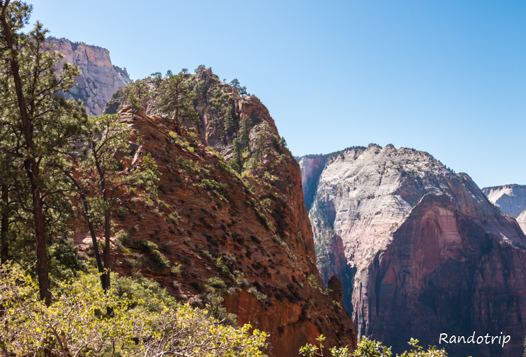 THE rando de Zion : Angels Landing