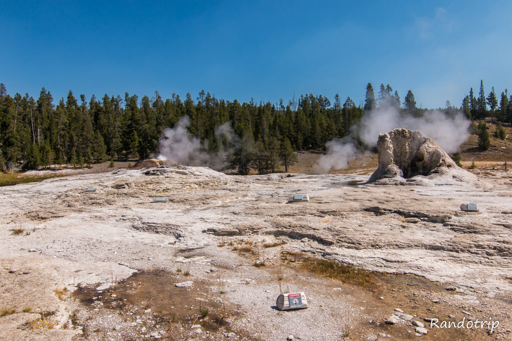 Giant Geyser à Yellowstone dans le Wyoming