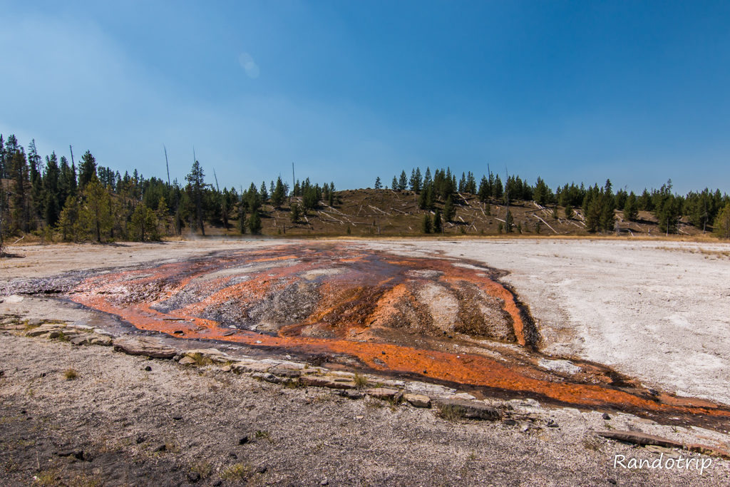 La partie Upper Geyser Basin de Yellowstone dans le Wyoming
